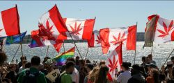 Photo for: Legal Laws on Cannabis, Every Canadian Should Know