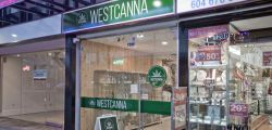 Photo for: Time to Unlock New Opportunities in the Cannabis Drinks Market