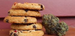 Photo for: How to Store Cannabis Edibles
