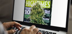 Photo for: 30 Leading Cannabis Magazines & Blogs You Must Read