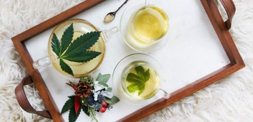 Photo for: 20 Leading CBD Infused Drinks