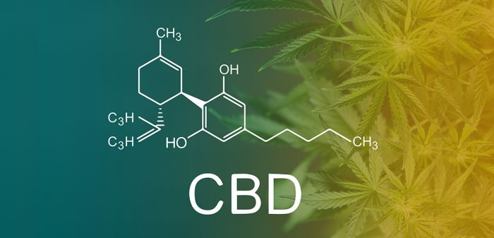 Photo for: CBD Is Moving The Cannabis Industry Forward
