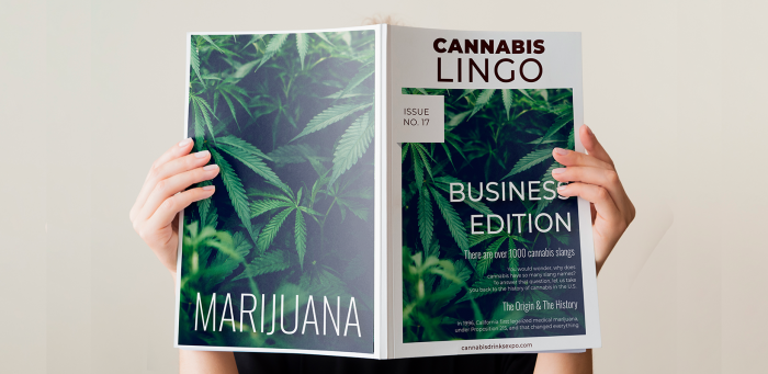 Photo for: Cannabis Lingo You Need To Know: Business Edition