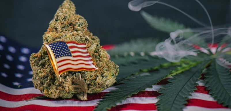 Photo for: Where in the U.S. Can You Legally Consume Cannabis?