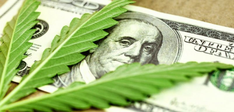 Photo for: American Cannabis: A Potential $90+ Billion Market