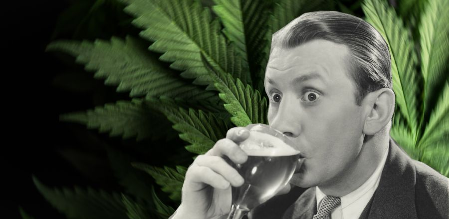 Photo for: Cannabis Drinks Expo: a must attend expo to source cannabis infused drinks