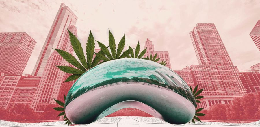 Photo for: Momentum, Influence, and Results at the Cannabis Drinks Expo - Chicago, Illinois
