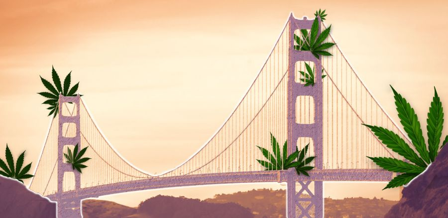 Photo for: High-Velocity Impact at the Cannabis Drinks Expo -  San Francisco, CA