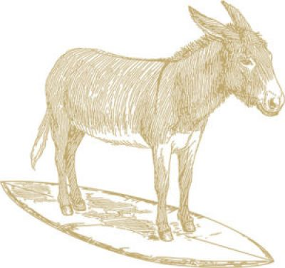 Logo for:  Surfing Donkey