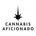 Photo for: Cannabis Aficionado